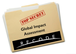 Recode - Global Impact Assessment Small