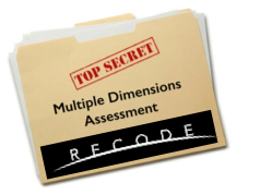 Recode - Multiple Dimensions Assessment Small